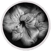 Black And White Lily Round Beach Towel