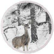 Black And White Mule Deer In Heavy Snowfall Round Beach Towel
