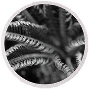 Black And White Palm Abstract 3624 Bw_2 Round Beach Towel