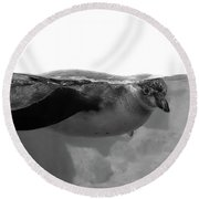 Black And White Penguin Round Beach Towel by Brooke T Ryan