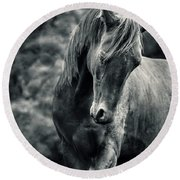 Black And White Portrait Of Horse Round Beach Towel