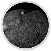Black And White Potato Round Beach Towel by Dan Sproul
