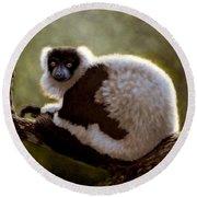 Black And White Ruffed Lemur Round Beach Towel