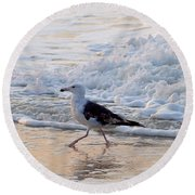 Round Beach Towel featuring the photograph Black-backed Gull by  Newwwman