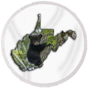 Black Bear Cub Climbing Down A Tree Round Beach Towel