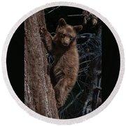 Black Bear Cub Sequoia National Park Round Beach Towel