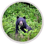Black Bear Eating His Veggies Round Beach Towel by Peggy Collins