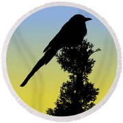Black-billed Magpie Silhouette At Sunrise Round Beach Towel