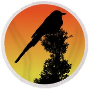 Black-billed Magpie Silhouette At Sunset Round Beach Towel