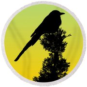 Black-billed Magpie Silhouette - Special Request Background Round Beach Towel