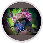 Black Blue Butterfly Round Beach Towel by Shirley Moravec