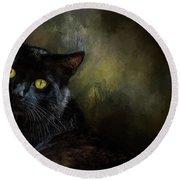Black Cat Portrait Round Beach Towel