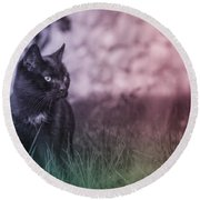 Black Cat Round Beach Towel by Silvia Bruno