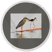 Black Crown Night Heron And Stilt Round Beach Towel