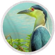 Black-crowned Night Heron Digital Art Round Beach Towel