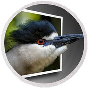 Black Crowned Night Heron Out Of Bounds Round Beach Towel