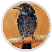 Round Beach Towel featuring the painting Black Drongo  by Jasna Dragun