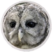 Black Eye Owl Round Beach Towel