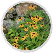 Black Eyed Susan Round Beach Towel