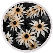 Round Beach Towel featuring the photograph Black Eyed Susan by Elena Elisseeva