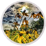 Black Eyed Susan Round Beach Towel by Sumoflam Photography