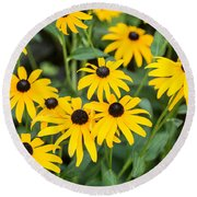 Black-eyed Susan Up Close Round Beach Towel by E Faithe Lester