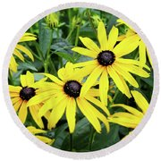 Black Eyed Susans- Fine Art Photograph By Linda Woods Round Beach Towel