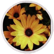 Round Beach Towel featuring the photograph Black Eyed Susans. Looks Like They're by Mr Photojimsf