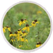 Round Beach Towel featuring the photograph Black-eyed Susans by Maria Urso