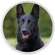 Black German Shepherd Dog Round Beach Towel