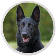 Black German Shepherd Dog Round Beach Towel by Sandy Keeton