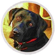 Black Lab Wants To Go For A Walk Round Beach Towel by Joseph J Stevens