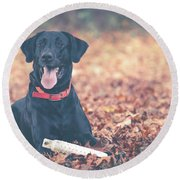Black Labrador In The Fall Leaves Round Beach Towel