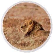 Black-maned Lion Of The Kalahari Waiting Round Beach Towel