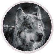 Black N White Wolf Round Beach Towel by Elaine Malott