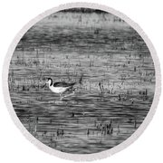 Black-necked Stilt Monochrome  Round Beach Towel