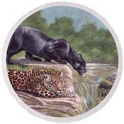Black Panther And Jaguar Round Beach Towel
