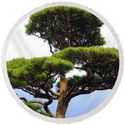 Black Pine Japan Round Beach Towel