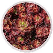 Black Roses Round Beach Towel