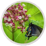 Black Swallowtail 54 Round Beach Towel