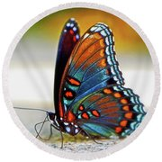 Black Swallowtail Butterfly 003 Round Beach Towel