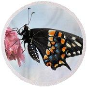 Black Swallowtail Butterfly II Round Beach Towel