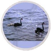 Black Swan Family Round Beach Towel