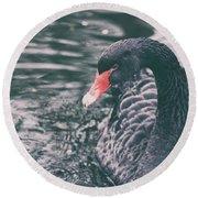 Black Swan Round Beach Towel