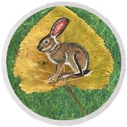 Black Tail Jack Rabbit  Round Beach Towel by Ralph Root