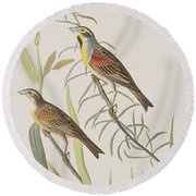 Black-throated Bunting Round Beach Towel by John James Audubon