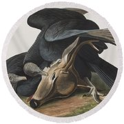 Black Vulture Or Carrion Crow Round Beach Towel