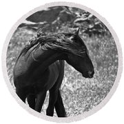 Black Wild Mustang Round Beach Towel