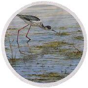 Round Beach Towel featuring the painting Black Winged Stilt by Alan M Hunt