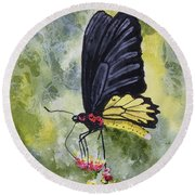 Round Beach Towel featuring the painting Black Winged Yellow Fellow by Sam Sidders